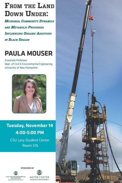 Cover Image of Paula Mouser Seminar Announcement