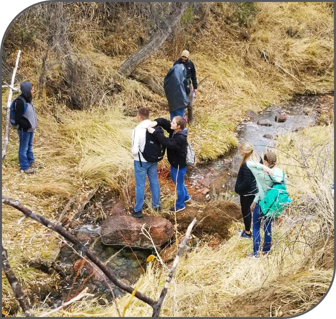 Students studying stream