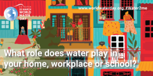 5. What role does water play in your home, workplace or school?